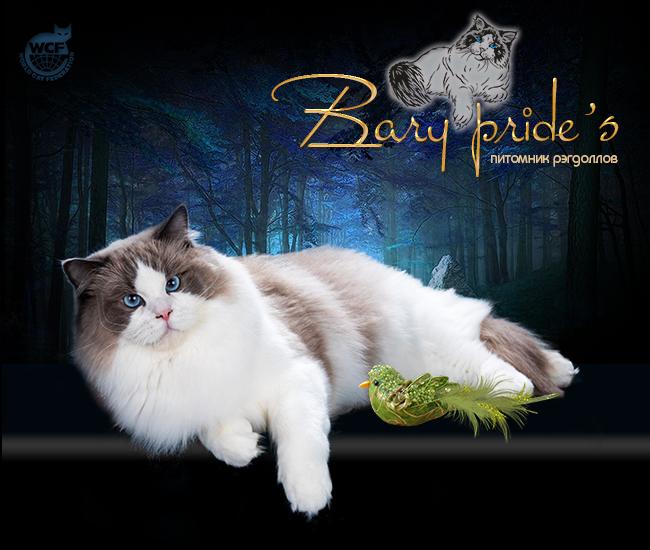 обложка-для-сайта-bary-prides