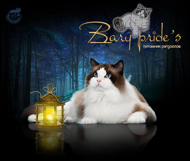 обложка-для-сайта-bary-prides2